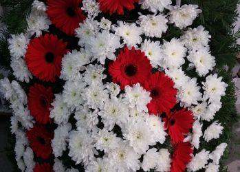 coroana funerara gerbera rosie