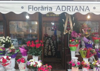 floraria adriana craiova